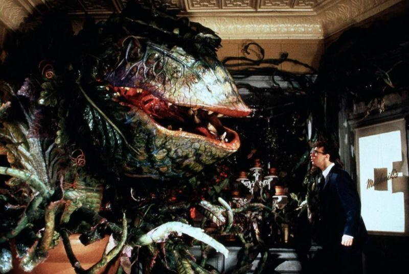 little-shop-of-horrors-halloween movies
