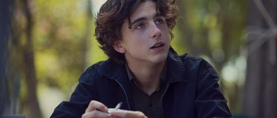 Timothée Chalamet Rumoured To Be Up For A Role In The MCU