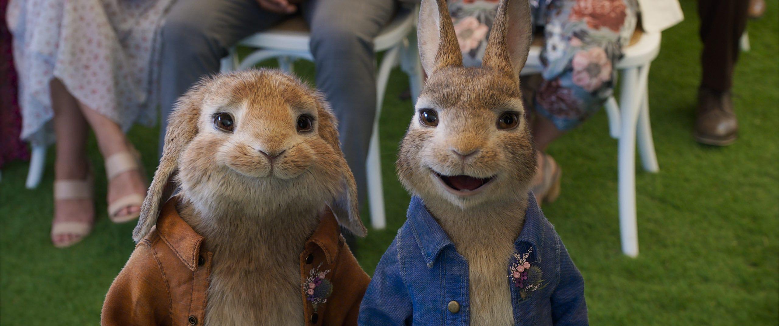 peter-rabbit-2-the-runaway cinemas re-open