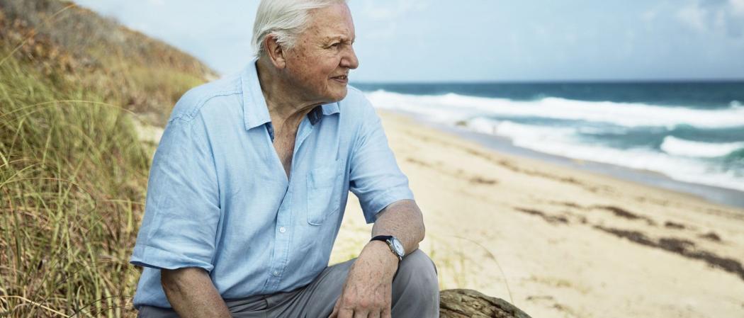 Blue Planet David Attenborough Earth Day