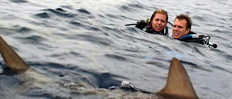 open-water_shark-movies