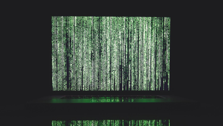 pexels-data-new